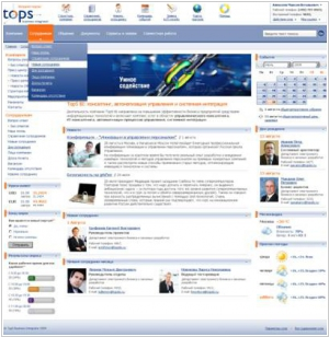 TopS BI Intranet Portal